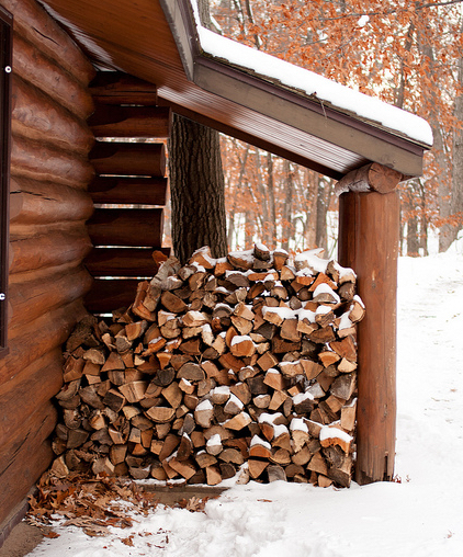 Winter\'s Wood